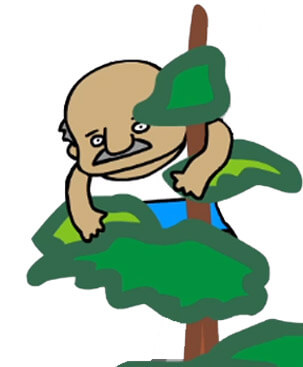 Frane Selak stucked in tree - draw picture